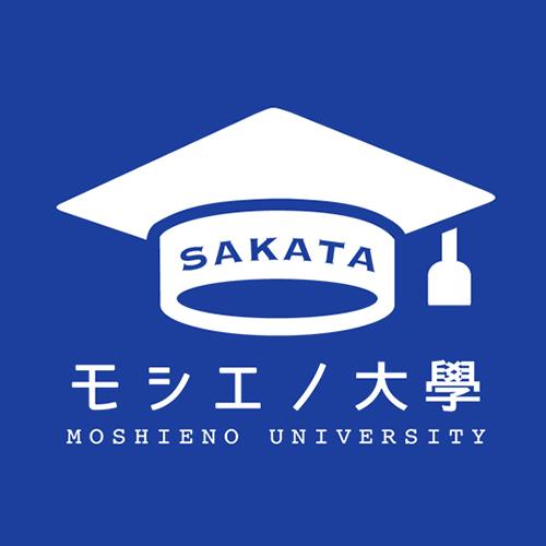 モシエノ大學